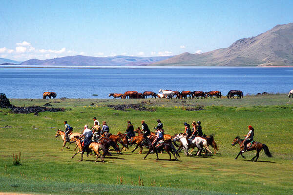 Cantering in the mongolian steppe