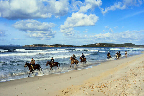 Cantering on the beach in Sardinia
