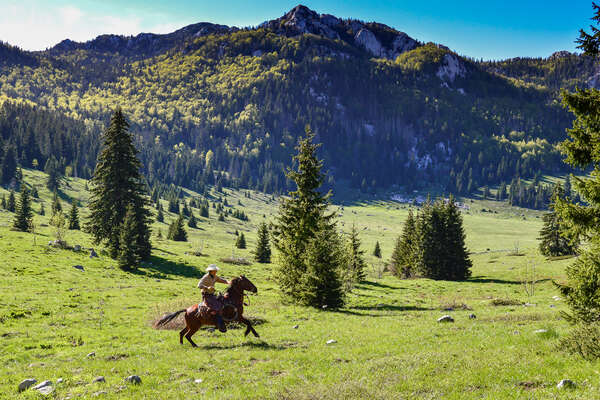 Cowboy galloping across a field in Croatia