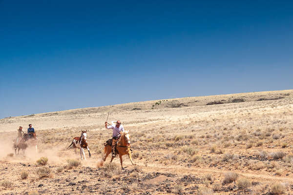 Cowboys and paint horses on a trail ride in USA