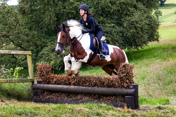 Cross-country programme and training at Castle Leslie
