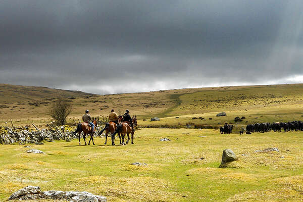 Dartmoor riding holiday in England