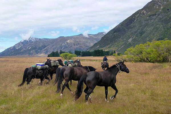 Discovering New Zealand on horseback