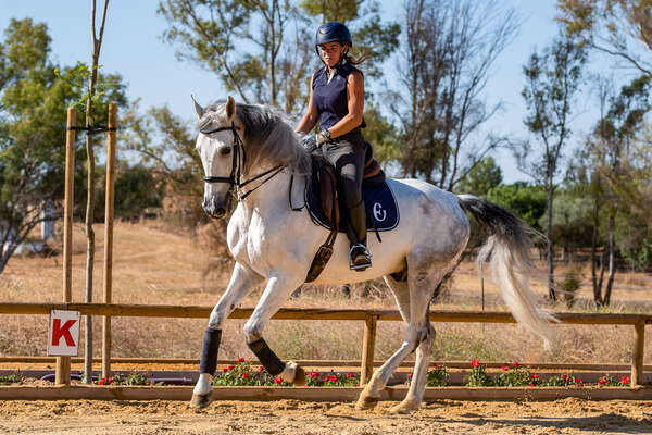 Dressage rider having a lesson during a train and trail holiday