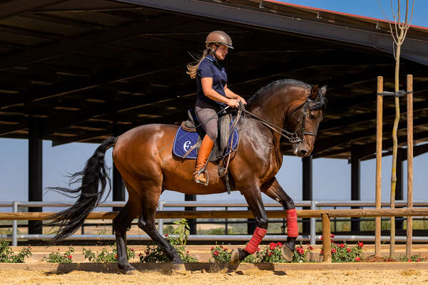 Dressage rider training at Epona in Spain