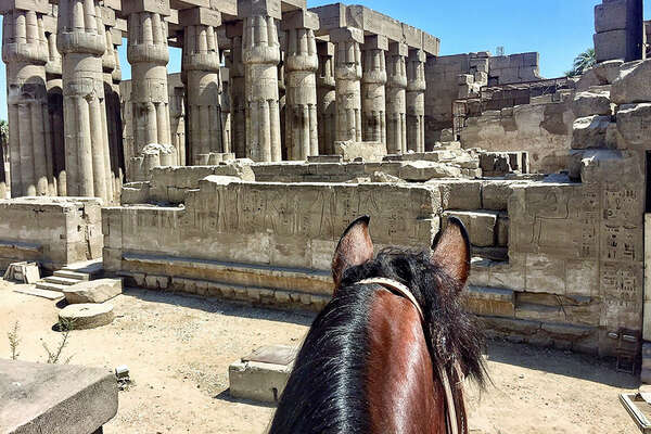 Egypt horseback holiday with Ride Egypt