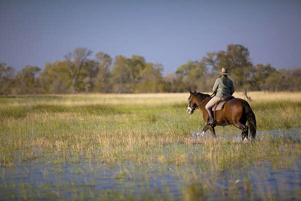 Explore the Okavango Delta in the saddle