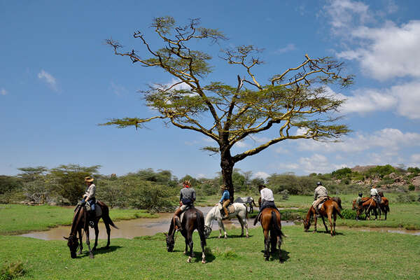 exploring the serengeti by horse
