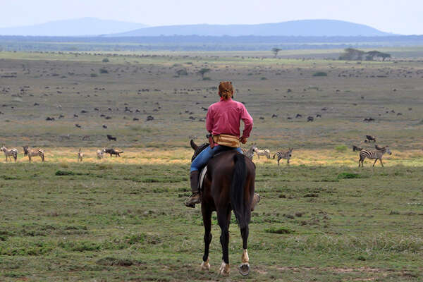 Following the herds of wildebeest in the saddle