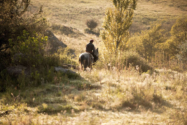 Gaucho in the pampa in Argentina
