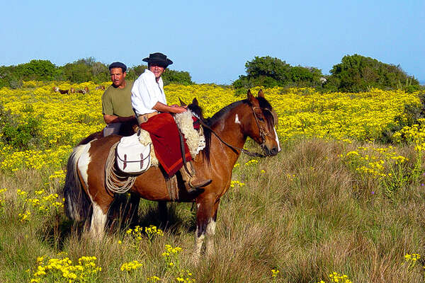 Gauchos and Uruguay on horseback