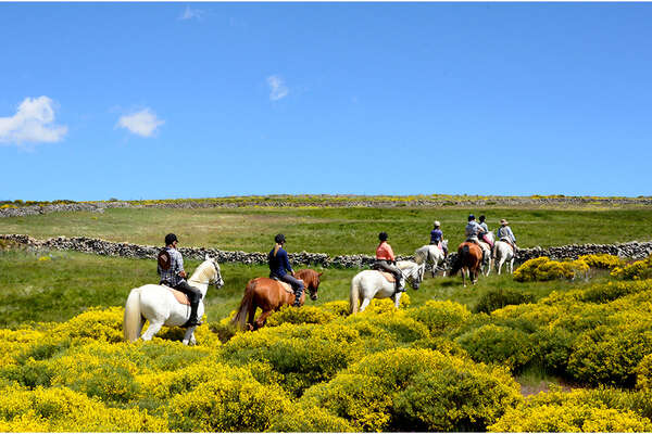 Gredos Valley in horseback trail