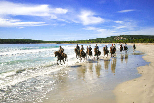 Group of riders cantering in the sea on a beach in Sardinia