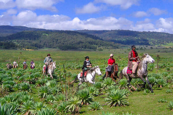 Group of riders cantering on an Ethiopian trail riding expedition