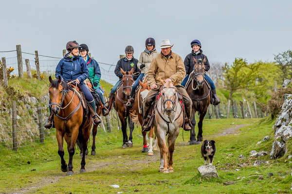 Group of riders heading home after a cattle drive in England
