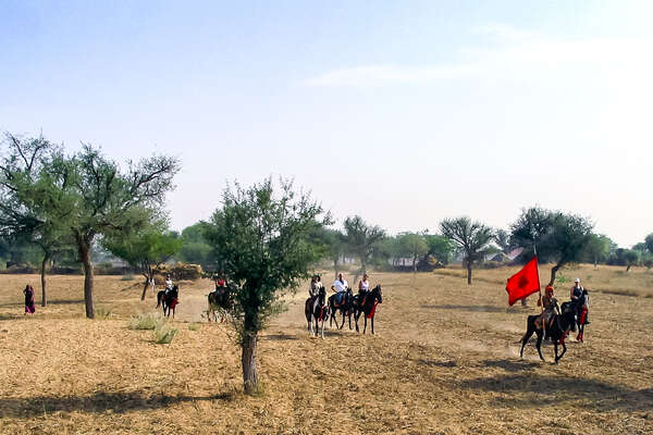 Group of riders in a field in India on horseback