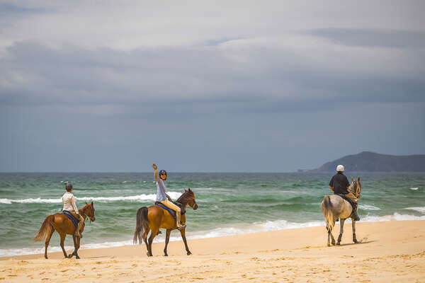 Group of riders on a beach trail ride in Australia, New South Wales