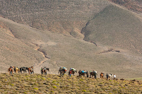 Group of riders on a trail ride in the Atlas mountains