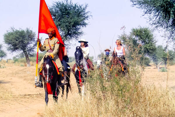 Group of riders on marwari horses in india
