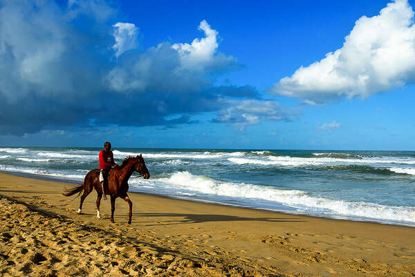 Horse and beach in Madagascar