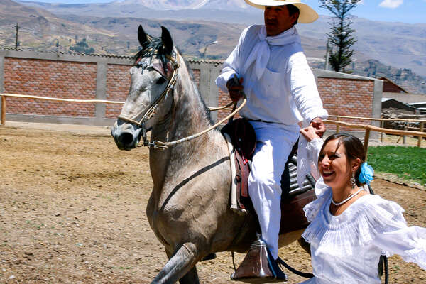 Horse and rider enjoying Peruvian traditions