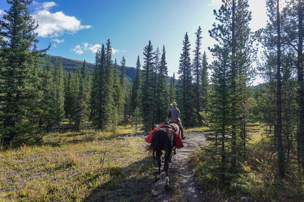 Horse and rider on a trail riding adventure in Canada
