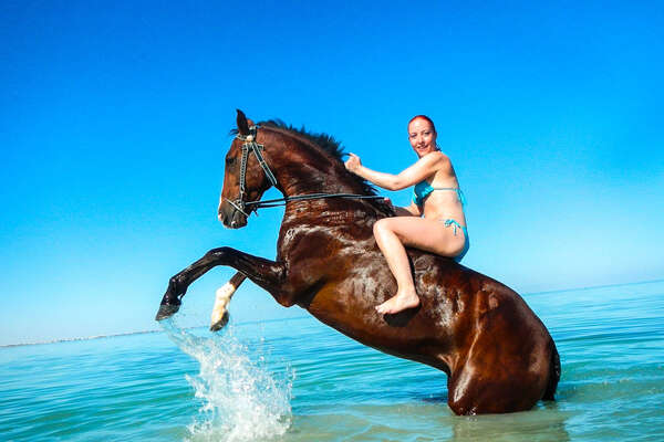 Horse and riding enjoying the waters of the red Sea