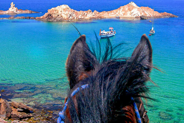 Horse looking out to the sea in Menorca