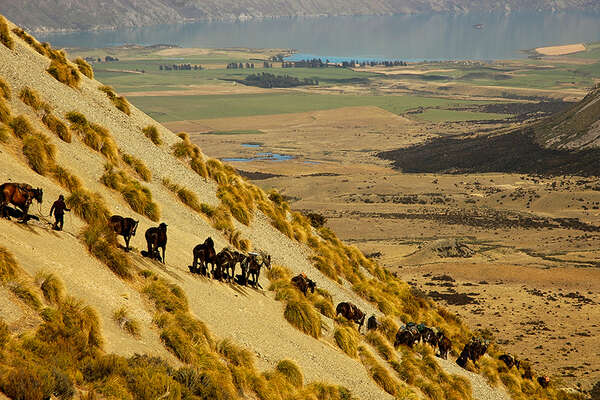 Horse riding holiday in New Zealand