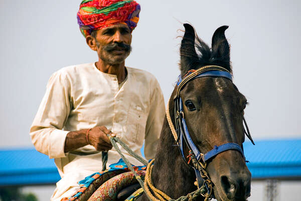 Horse riding holiday in Rajasthan visiting the Naguar Fair