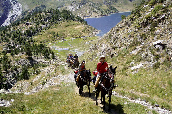 Horse riding trail in the french mountains