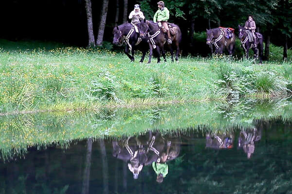 Horse riding vacation in The Pyrenees