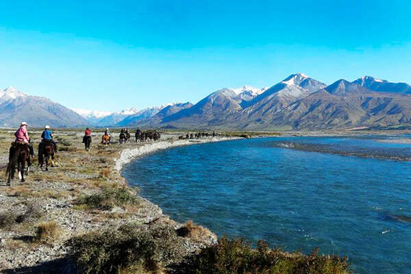 Horse trekking in New Zealand.