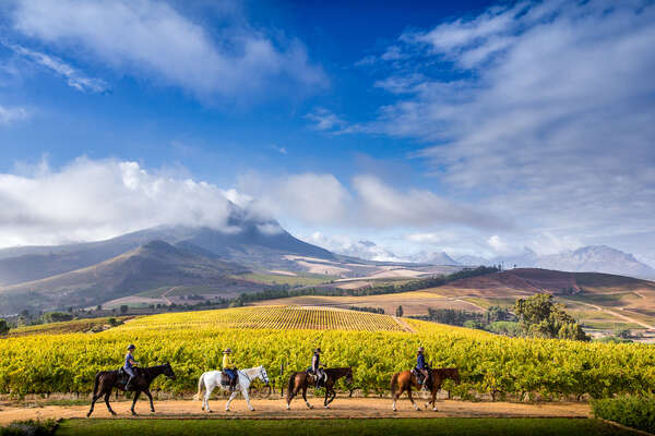 Horseback adventures at Cape Winelands riding holidays