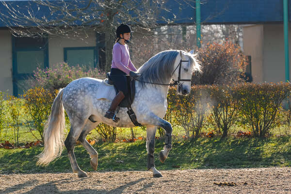 Horseback rider on a dressage lesson in Andalucia, Spain