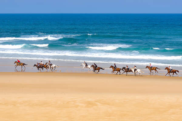Horseback riders cantering on the beach in France