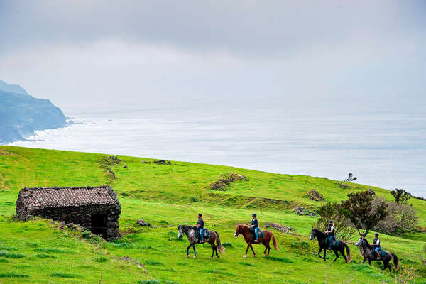 Horseback riders on a green meadow in the Azores