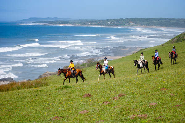 Horseback riders on a riding holiday in South Africa, trail riding