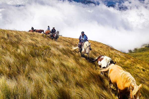 Horseback riders riding in the Andes in Ecuador