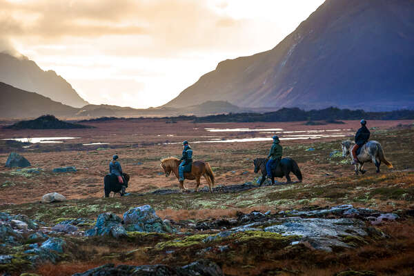 Horseback riders riding out at the golden hour in Norway