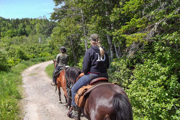Horseback riding in Gaspesie, Canada