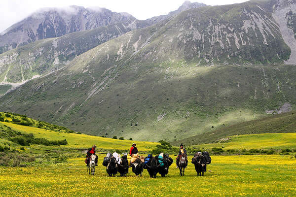 Horseback riding trail in Tibet