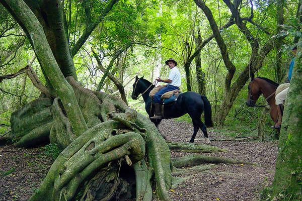 Horseback riding trails in Uruguay