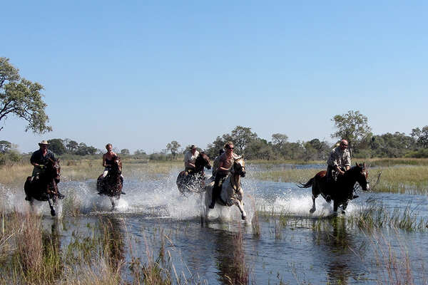 Horseback safari in botswana