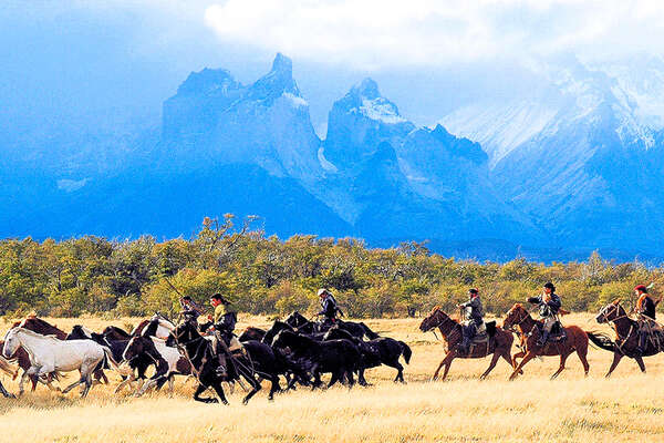 Horseback trail and horse drive in Chile