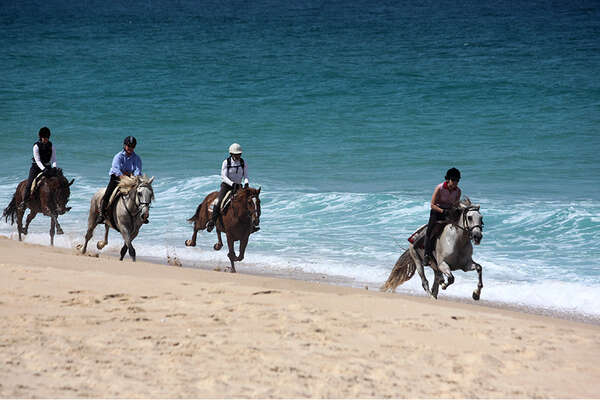 Horseback trail on the portuguese beach