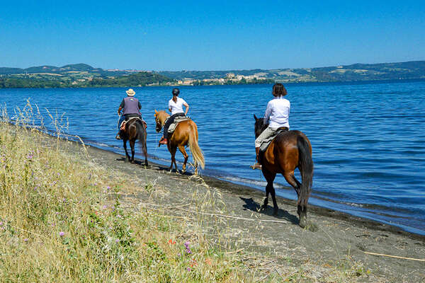 Horseback trail ride Bolsena lake