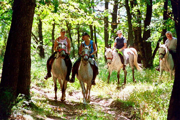 Horseback trail ride in Romania
