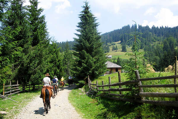 Horseback trail ride in Transylvania, Romania