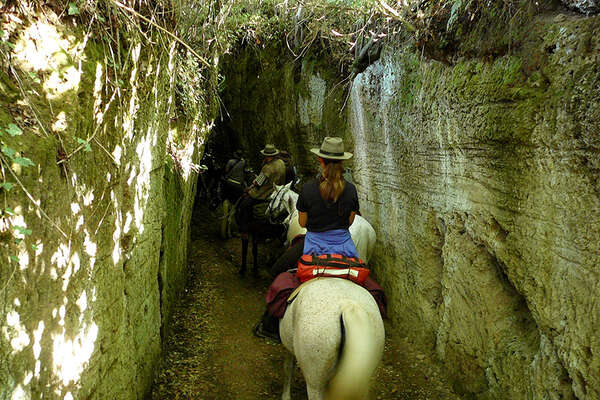 Horseback trail ride in Tuscany, Italy